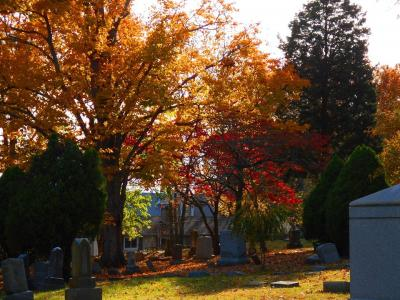 Mt. Washington Cemetery grounds