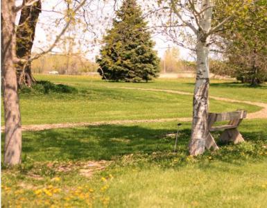 Cedar Valley Arboretum