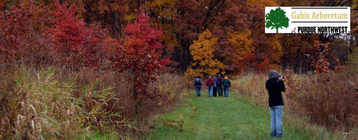 Gabis Arboretum fall hike