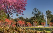 Los Angeles County Arboretum